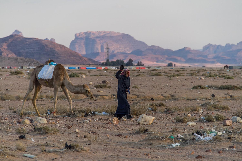 wadi rum beduin camel wastes