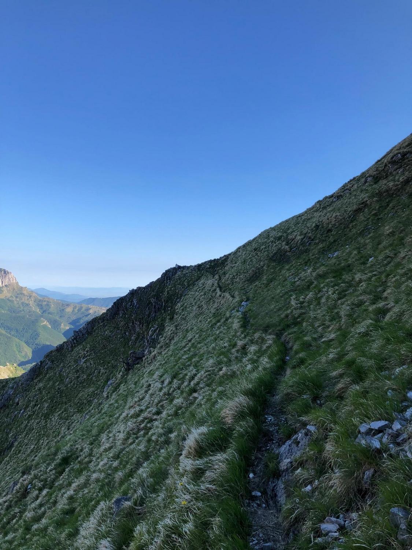Paleo Grass Apuan Alps Monte Sella
