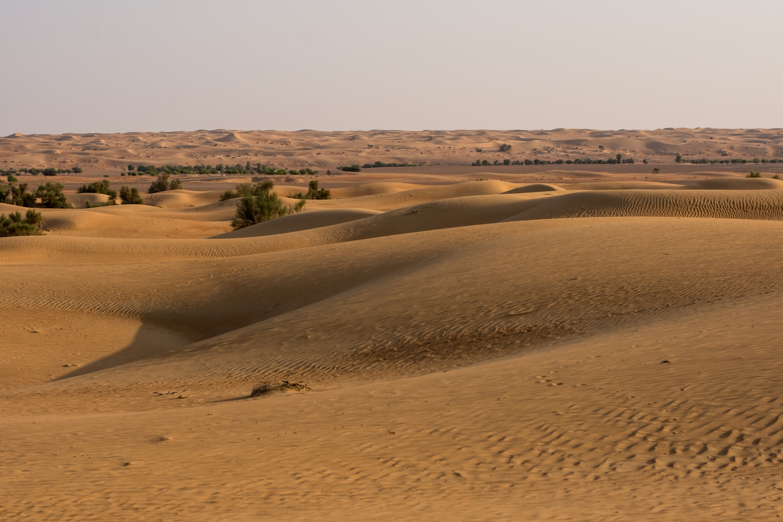 al-maha-dubai-desert-resort-conservation.reserve4
