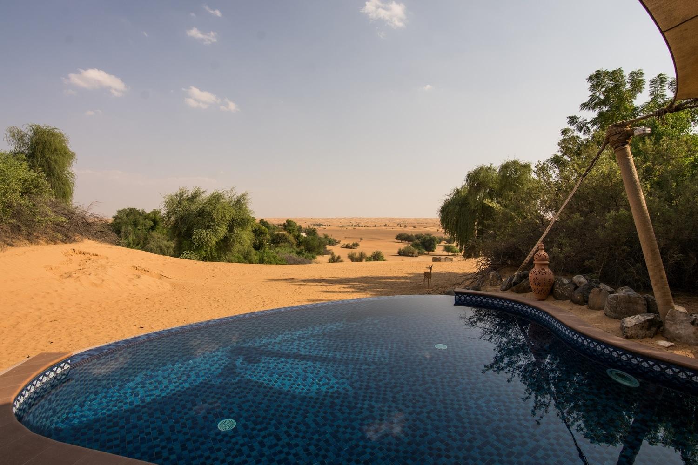 al-maha-dubai-desert-resort24