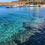Asinara National Park Sardinia Sardegna Giulio Aprin