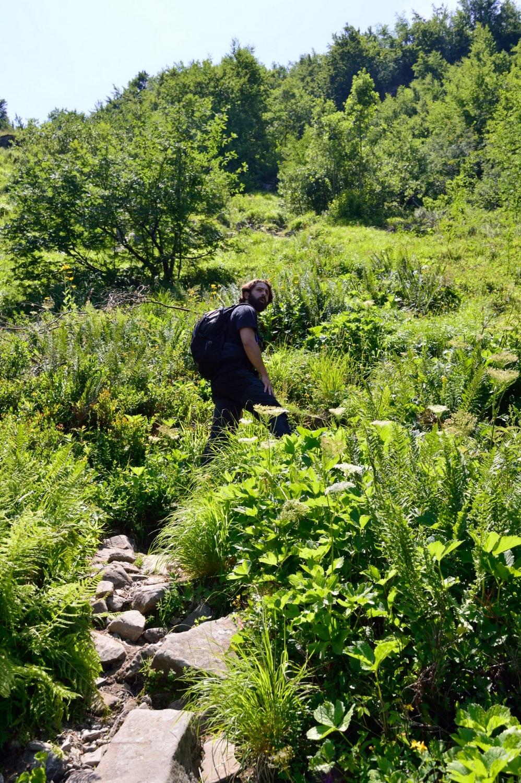 Monte Giovo Summer Hike Giulio Aprin